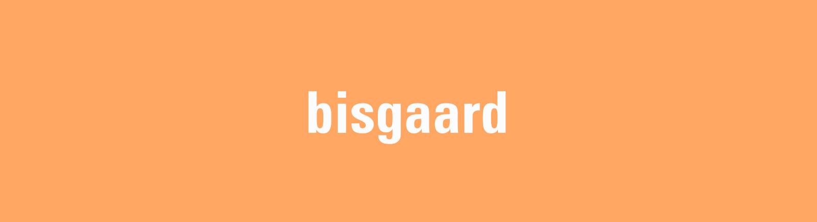 Bisgaard Sneaker für Kinder im Online-Shop von GISY kaufen