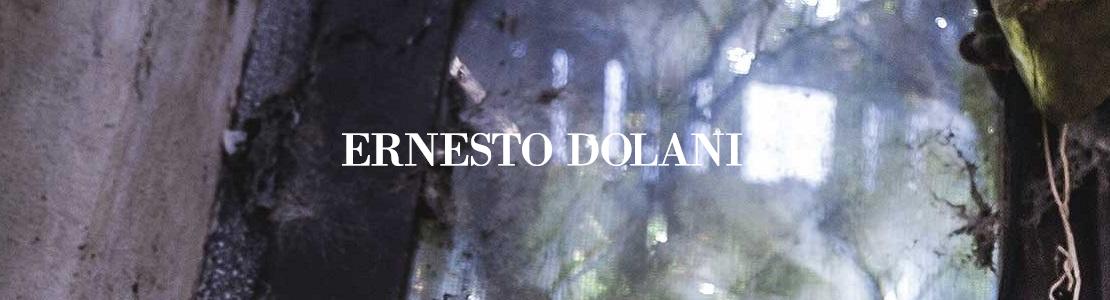 Ernesto Dolani Markenschuhe online kaufen im Shop von GISY