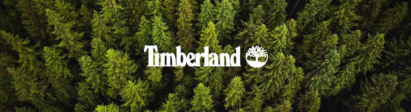 Timberland Damenschuhe online kaufen im Shop von GISY