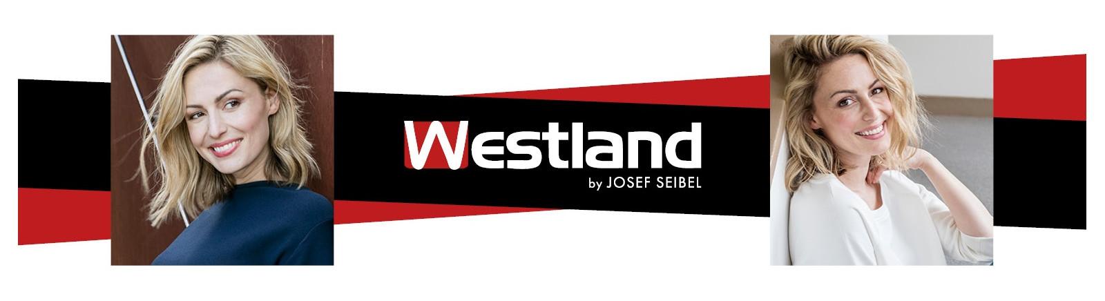 Westland Herrenschuhe online kaufen bei GISY Schuhe